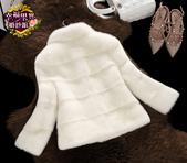 10月(1):521327010631短款水貂外套立領貂皮大衣女整貂皮草-珍珠白1.jpg