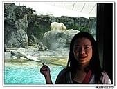 99.11.11~18…東澳雙城蜜月行(第4天) :布里斯本-第四天 (44).jpg