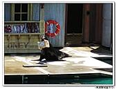 99.11.11~18…東澳雙城蜜月行(第4天) :布里斯本-第四天 (54).jpg