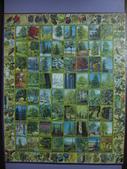 非貓拼圖 before 2014:Tree of North America - 3