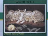 Wachifield:ふくろう裁判