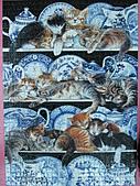貓拼圖 before 2014:Willow Pattern - 1