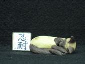 貓國物語 1:Shana