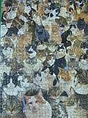 貓拼圖 before 2014:cats galore!