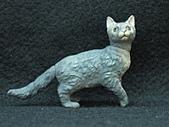 寵物動物 4:# 012-B