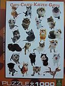貓拼圖 before 2014:CATS.CHATS.KATZEN.GATOS