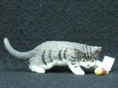 貓國物語 4:Silba
