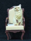 貓國物語 1:Moss 異色版之一