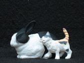 貓國物語 3:Rozetta 異色版