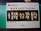貓拼圖 before 2014:reflection