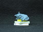 寵物大好-貓咪篇:IMG_0523.jpg