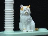 貓國物語 6:Patricia