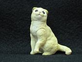 寵物動物 4:# 013-A