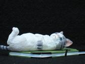 貓國物語 2:Rainy
