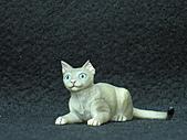 寵物動物 4:# 009 - 1