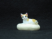 寵物大好-貓咪篇:IMG_0521.jpg