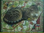 貓拼圖 before 2014:Cats at Play - 2