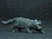 寵物動物 4:# 011-B