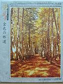 非貓拼圖 before 2014:金色の林道