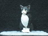 貓國物語 1:Milk