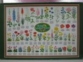 非貓拚圖 2014:British Garden Flowers