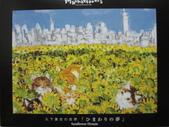 移山仍須努力:ひまわりの夢  Sunflower Dream