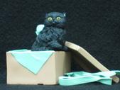 貓國物語 1:Lapan 異色版