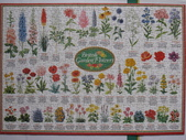 非貓拚圖 2014:British Garden Flowers - 1