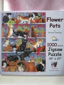移山仍須努力:Flower Pots