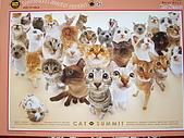 貓拼圖 before 2014:Cat Summit