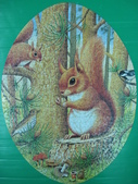 非貓拼圖 before 2014:Red Squirrels -1