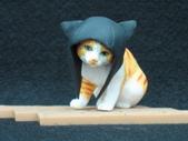 貓國物語 3:Willis