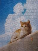 貓拚圖 2015:海岸 - 1