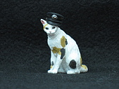 寵物大好-貓咪篇:IMG_0518.jpg