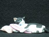 貓國物語 2:Orssetta 異色版
