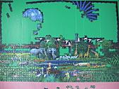 非貓拼圖 before 2014:Animals Jungle - 4