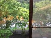 Japan:IMG_9294.JPG
