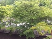 Japan:IMG_9301.JPG