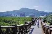 102-2-16春節平溪未婚聯誼:th.jpg