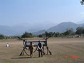 20090101-3飛牛牧場顏氏牧場露營:DSC05281.JPG