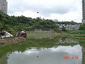 20080420汐止金龍湖健走:DSC04450.JPG