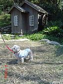 20090101-3飛牛牧場顏氏牧場露營:DSC05223.JPG