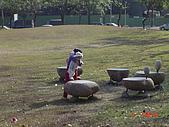 20090101-3飛牛牧場顏氏牧場露營:DSC05304.JPG