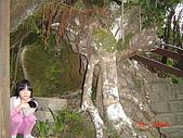 20081228象山六巨石:DSC05190.JPG