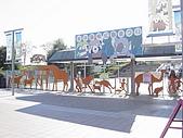 2004日本動物園之旅第二天:DSC05291.JPG