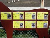 2004日本動物園之旅第二天:DSC05297.JPG