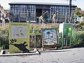 2004日本動物園之旅第二天:DSC05309.JPG