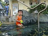 20090521-23:墾丁天鵝湖下水囉2.jpg