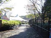 2004日本動物園之旅第二天:DSC05331.JPG