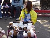 2004日本動物園之旅第二天:DSC05355.JPG